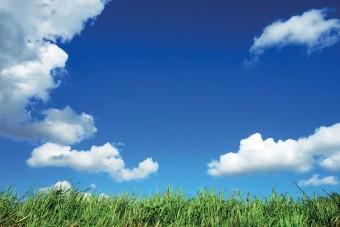Pod chmurką:  sezon grillowo-piknikowy