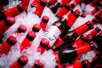 Oficjalna premiera piwa Bud w Polsce