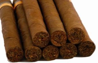 Firma tobacco trading international poland