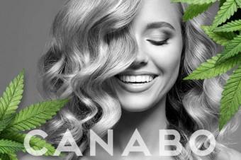 Canabo – naturalna siła pielęgnacji