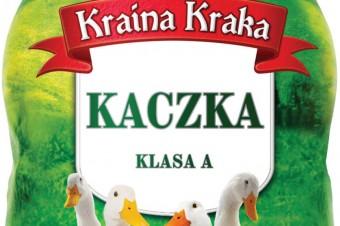 Kaczka Kraina Kraka