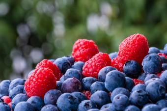 Strategie bioróżnorodności oraz systemu żywnościowego przyjęte przez KE
