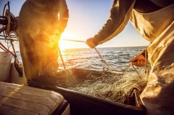 Zrównoważony przemysł rybny stawia czoła pandemii COVID-19