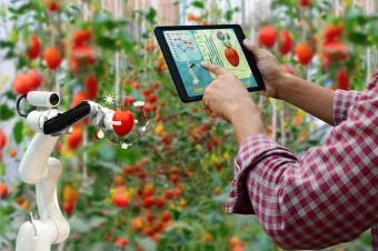 Ulgi na robotyzację i prototypy pobudzą innowacyjność polskich firm