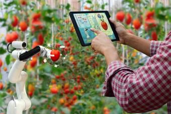 Innowacje i technologie wkraczają do świata żywności