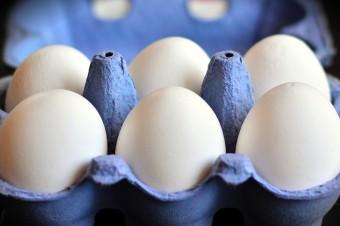 70 proc. konsumentów woli kupować jaja z wolnego wybiegu