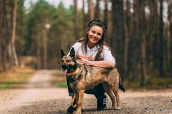 """Pedigree rusza z ogólnopolską kampanią """"Dla dobra psów"""" i wspiera schroniska w całej Polsce!"""
