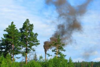 Bilans pandemii nie jest korzystny dla jakości powietrza