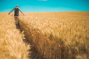 Rolnicy z coraz większymi długami